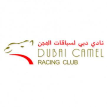 Dubai Camel Racing Track