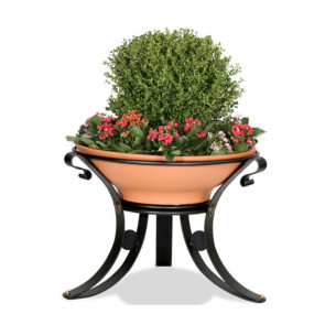 Dalia Flower Box