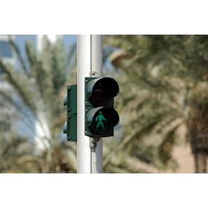 Pedestrian Signal Heads